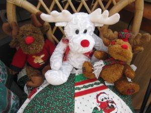 reindeer alert