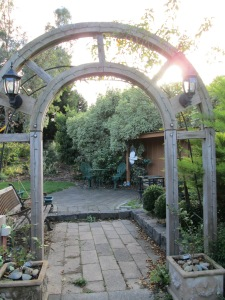 arches in my garden (5)