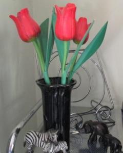 Balinese tulips
