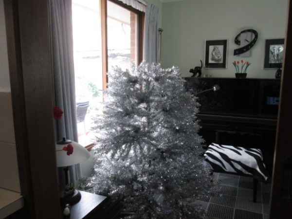 the place for the tree (4)