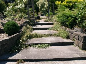 repaired bluestone steps
