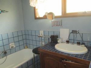 Bathroom reno BEFORE (2)
