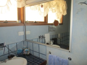 Bathroom reno BEFORE (3)
