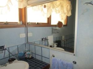 Bathroom reno BEFORE (3)