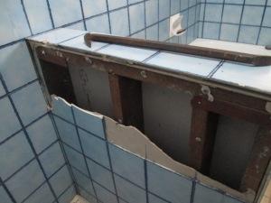 Bathroom reno DISMANTLING (4)