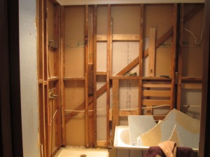 Bathroom reno DISMANTLING (5)