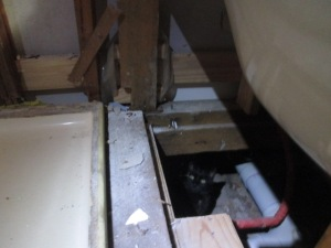 Bathroom reno DISMANTLING (6)