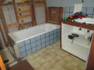 Bathroom reno DISMANTLING (7)