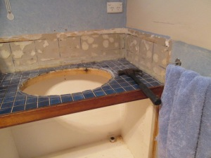 Bathroom reno DISMANTLING (9)