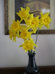 the daffodil tradition continues